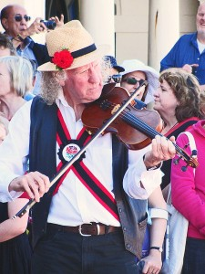 A fiddler fiddling
